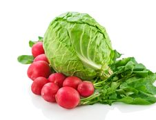 Cabbage And Garden Radish Royalty Free Stock Photography