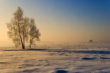 Free Winter Scenery Stock Photos - 17354293