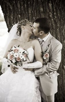 Free Couple Kiss Royalty Free Stock Image - 17354376