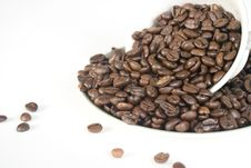 Free Coffee Beans In Cup And Saucer Stock Images - 17354424