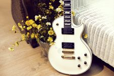 Free White  Electric Guitar With Flowers Stock Images - 17355294