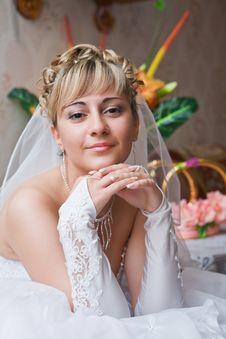 Free Bride Stock Photos - 17355663