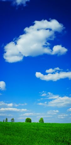 Free Field And Sky Wiyh Clouds Stock Photos - 17356303