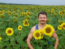 Free Man In Sunflowers Stock Image - 17357671