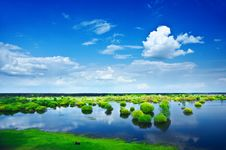 Free View On A Flood Field Royalty Free Stock Photography - 17357967
