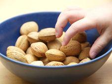 Free Almonds Stock Photos - 17359163