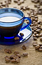 Free Coffee Beans With Cup On Saucer Stock Photo - 17361730