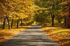 Free Lane In The Autumn Park Stock Images - 17360604