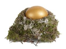 Free Golden Egg In A Real Nest Royalty Free Stock Photos - 17361348