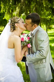 Free Wedding Pair Kisses Stock Photography - 17361432