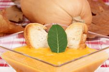 Cream Of Squash Soup Royalty Free Stock Images