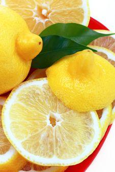 Free Lemon Stock Images - 17361874