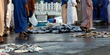 Free Outdoor Fish Market In Sharjah, UAE Stock Photo - 17364630