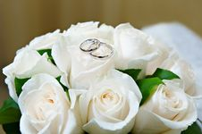 Free Gold Wedding Rings On The Flower Rose Stock Photo - 17365030