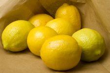 Lemons And Limes Stock Image