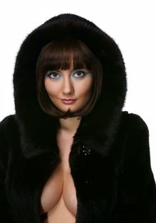 Free The Sexy Girl In A Fur Coat Royalty Free Stock Image - 17365706