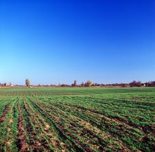 Free Rural Landscape. Royalty Free Stock Photos - 17369878