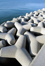 Free Tetrapods Stock Images - 17370114