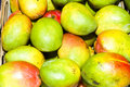 Free Mango Fruits Stock Images - 17374354