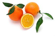 Free Oranges Stock Images - 17371974