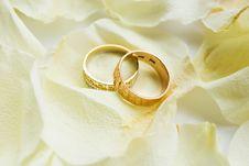 Free Rings Royalty Free Stock Image - 17373056