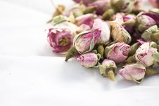 Free Roses Flowers On White Background Royalty Free Stock Image - 17373986