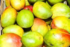 Free Mango Fruits Stock Images - 17374354