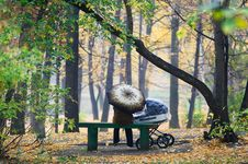 Free In Autumn Park Royalty Free Stock Photos - 17374368
