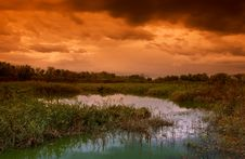 Free Landscape Stock Image - 17374661