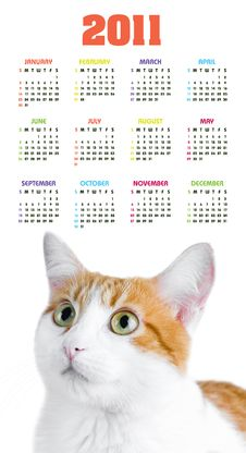 Free Vertical Color Calendar For 2011 Year Stock Photography - 17379252