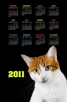 Free Vertical Color Calendar For 2011 Year Royalty Free Stock Image - 17379256
