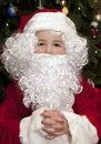 Free Boy Dressed As Santa Stock Images - 17381484