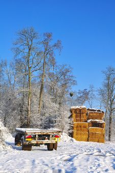 Free Stack Of Hay And Trailer Transport Stock Image - 17383041