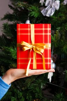Free Gift On A Woman Hand Stock Photo - 17383990