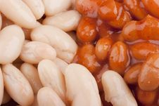 Free Baked Beans Stock Photography - 17386502