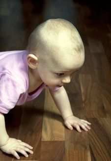 Free Crawling Stock Photography - 17387132