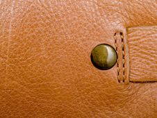 Free Leather Royalty Free Stock Photo - 17387845