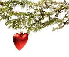 Free Branch Ate A Christmas Ornament Stock Photos - 17388143