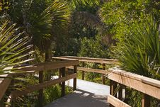 Free An Island Pathway Stock Photography - 17389562