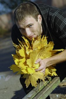 Free Young Handsome Man With Yellow Leaves Royalty Free Stock Photo - 17389585