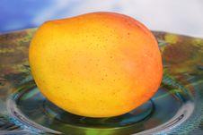 Free Mango Royalty Free Stock Photography - 17390557