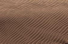 Free Dune Stock Photo - 17391430