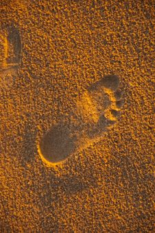 Free Sandy Footprint Royalty Free Stock Photos - 17391508