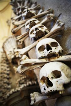 Free Sculls And Bones On The Wall Royalty Free Stock Photography - 17391897