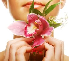 Free Beautiful With  Orchid Flower Stock Image - 17392551
