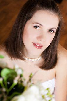 Free Studio Portrait Of Beautiful Stylish Bride Royalty Free Stock Images - 17394429