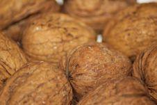 Free Walnuts 2 Royalty Free Stock Photo - 17399345