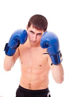 Free Boxer Stock Photo - 17399430