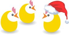 Free Christmas Chickens Royalty Free Stock Photos - 17399678