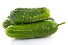 Ripe Green Cucumbers Stock Photography
